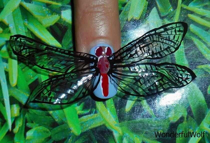 DragonflyonGrass