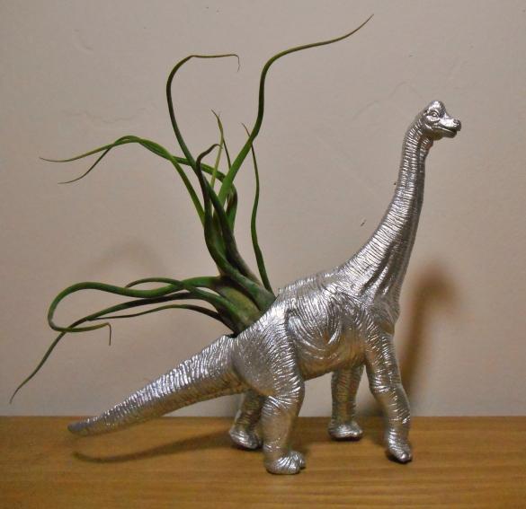 Brachiosaurus CaputMedusae (1)