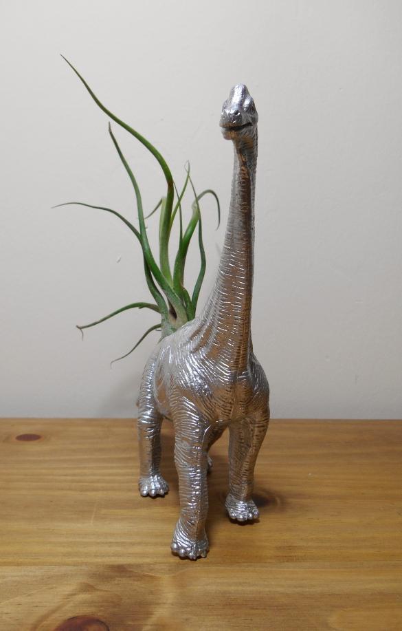 Brachiosaurus CaputMedusae (3)