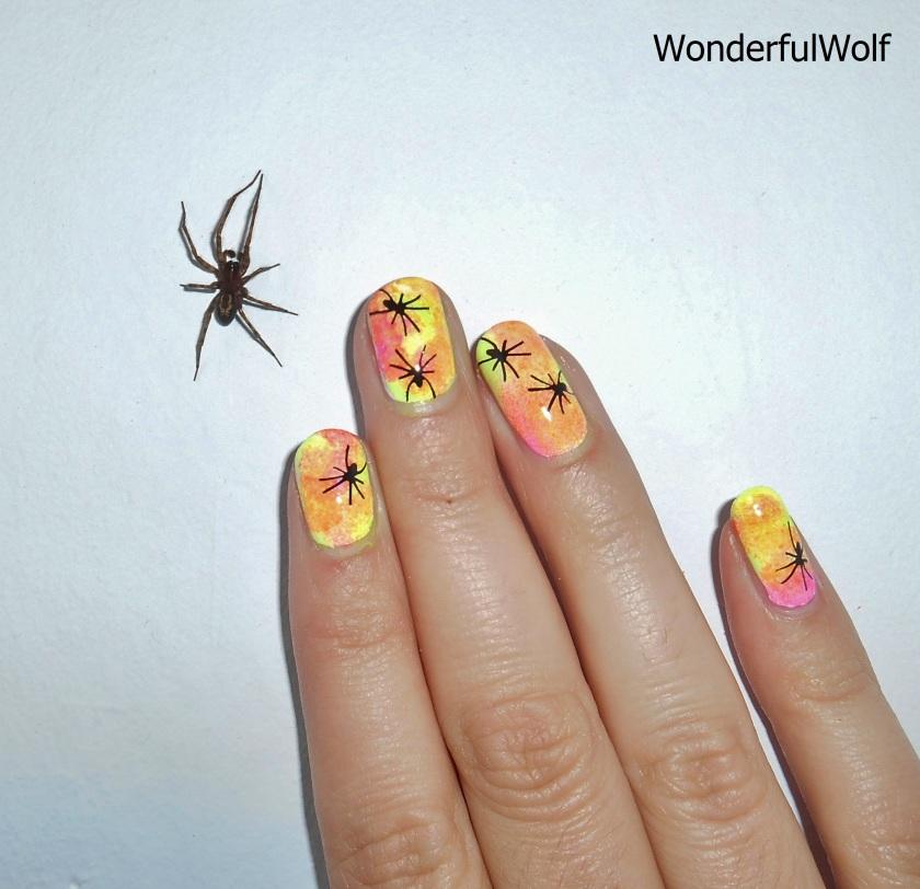 Spider Friend
