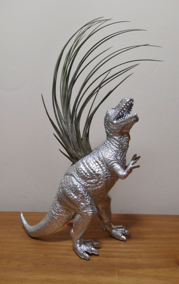 T-Rex Juncea SOLD