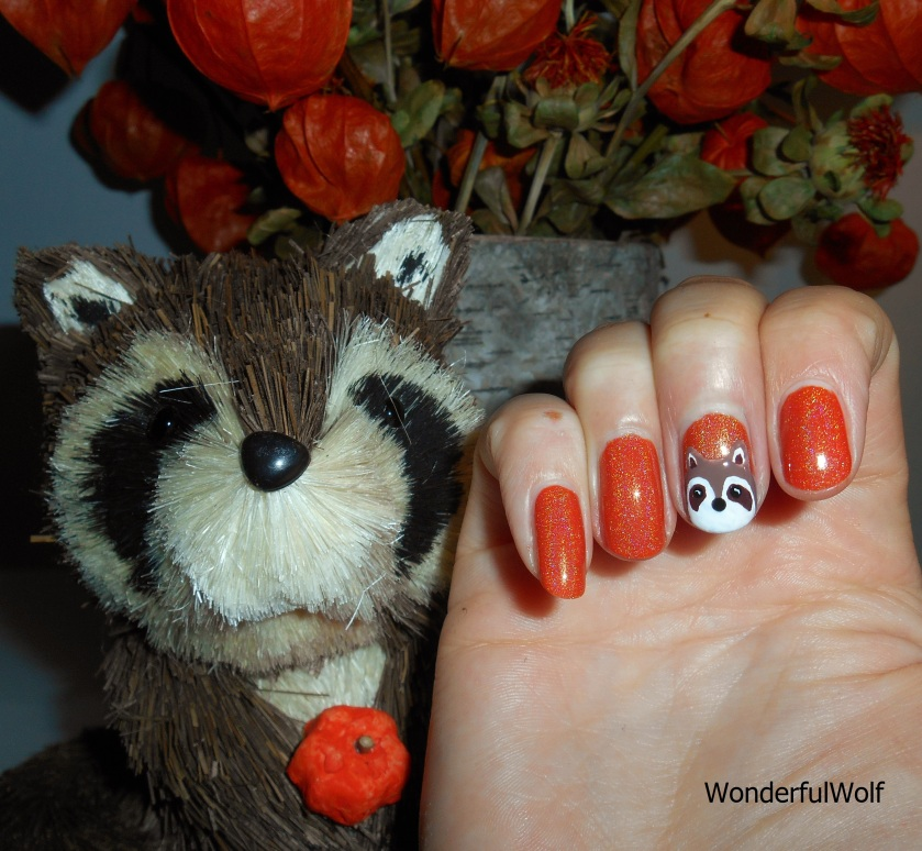 AutumnRaccoon