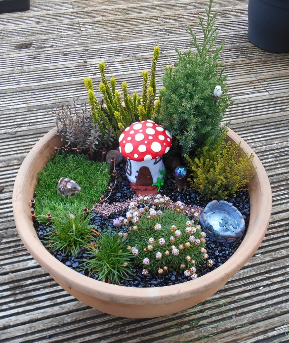 FairyGarden (1)