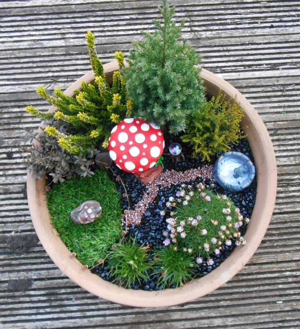 FairyGarden (3)