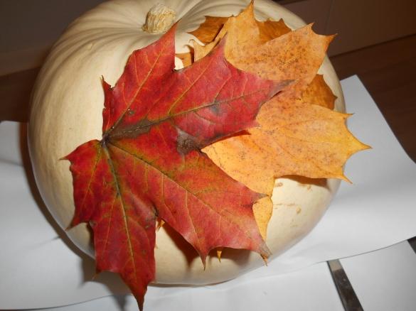 Pinned Leaves on Pumpkin