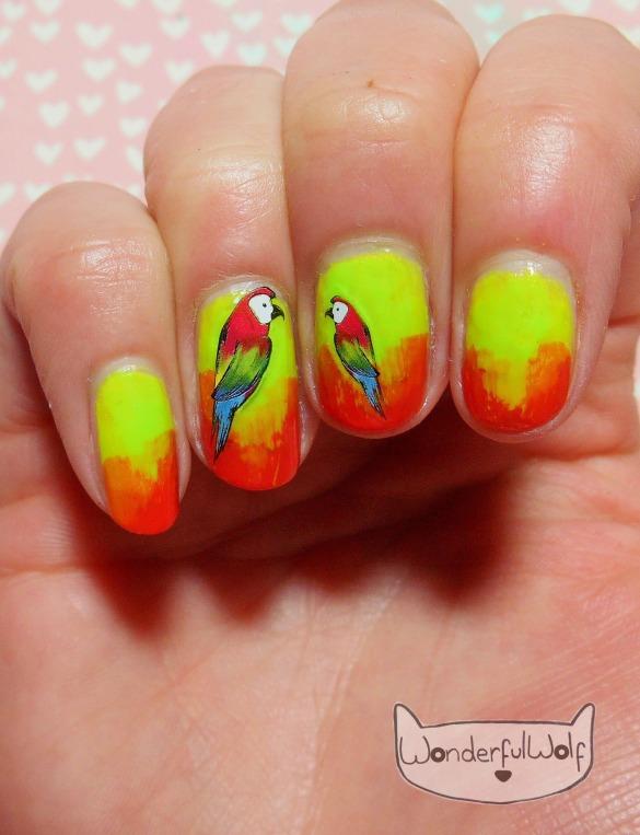 ombre parrots.JPG